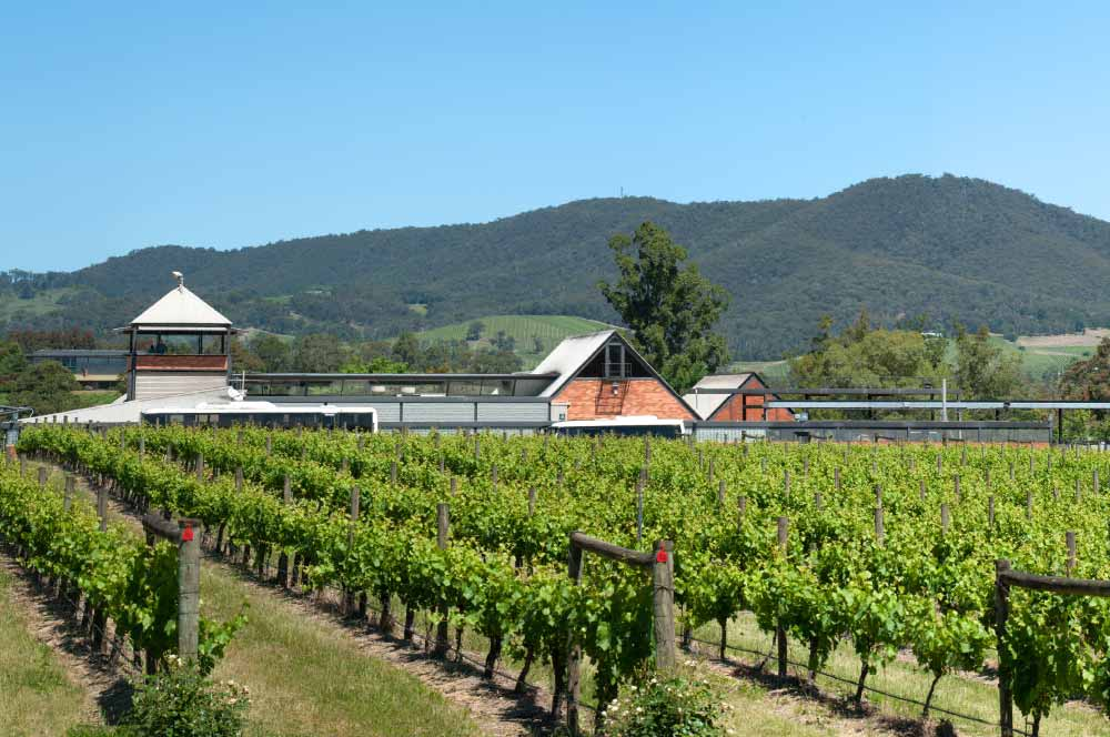 Yarra Valley Winery Tour, Rochford Winery