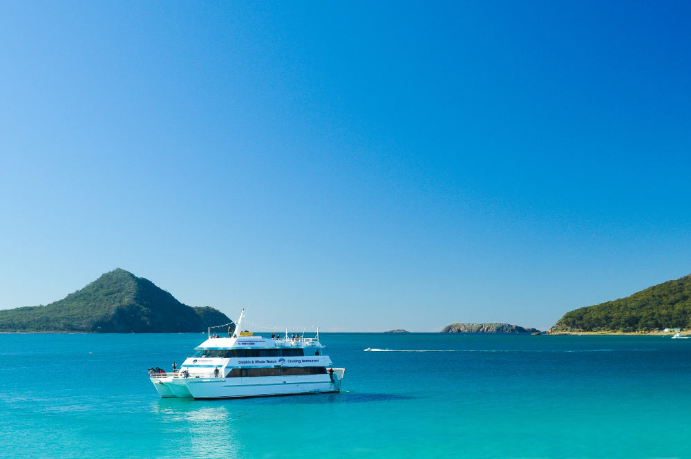 Port Stephens day tour, dolphin cruise